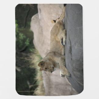 Lion cub baby blanket