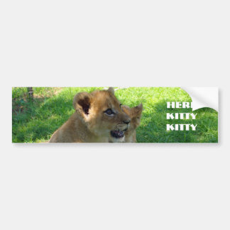 Lion Cub Bumper Sticker Car Bumper Sticker