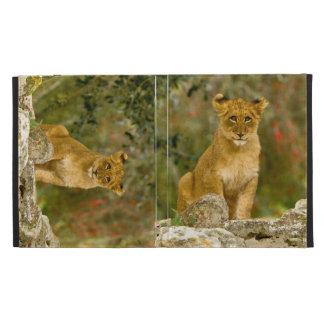 Lion Cub iPad Folio Covers