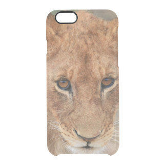 Lion Cub Clear iPhone 6/6S Case