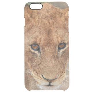Lion Cub Clear iPhone 6 Plus Case