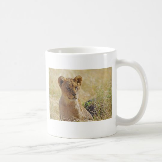 Lion Cub Close-up Coffee Mug