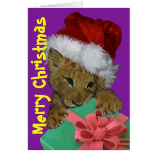 Lion Cub Gift Christmas Card