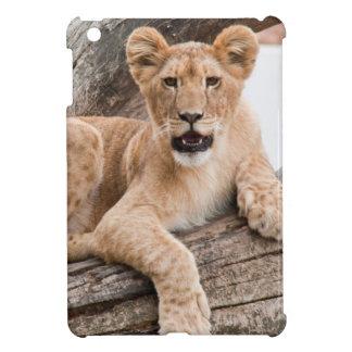 Lion cub iPad mini case