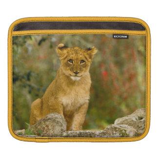 Lion Cub iPad Sleeve