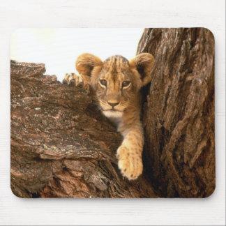 Lion Cub Mouse Mat