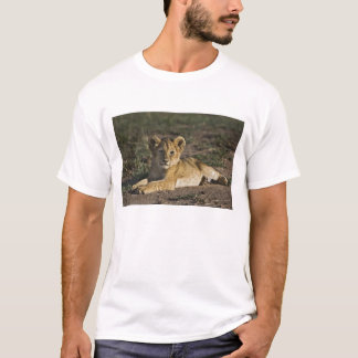 Lion cub, Panthera leo, lying in tire tracks, T-Shirt