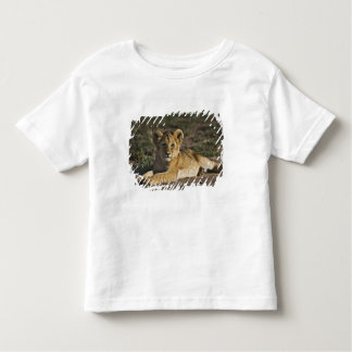 Lion cub, Panthera leo, lying in tire tracks, Toddler T-Shirt
