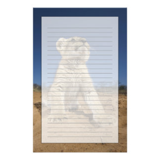 Lion Cub (Panthera Leo) sitting on sand, Namibia Stationery