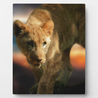 Lion Cub Plaque