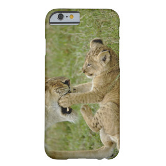 Lion cub playing with female lion, Masai Mara Barely There iPhone 6 Case