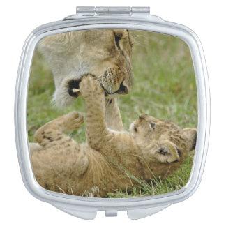 Lion cub playing with female lion, Masai Mara Makeup Mirror