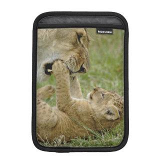 Lion cub playing with female lion, Masai Mara Sleeve For iPad Mini