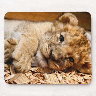 Lion cub relaxing mouse mat