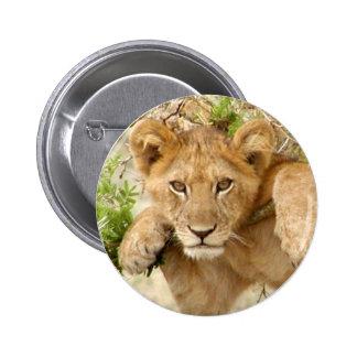 Lion Cub ROUND Button