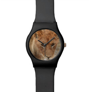 Lion Cub Watch