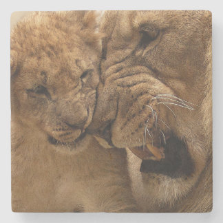 Lion cub with dad stone beverage coaster