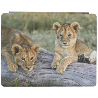 Lion cubs on log, Panthera leo, Masai Mara, 2 iPad Cover