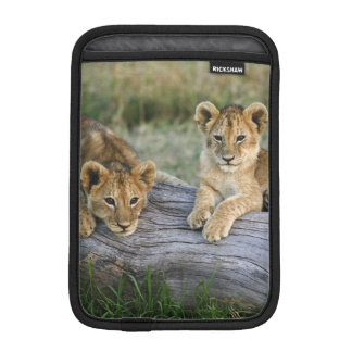 Lion cubs on log, Panthera leo, Masai Mara, 2 iPad Mini Sleeve