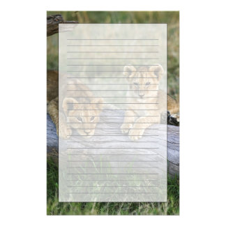 Lion cubs on log, Panthera leo, Masai Mara, 2 Personalized Stationery