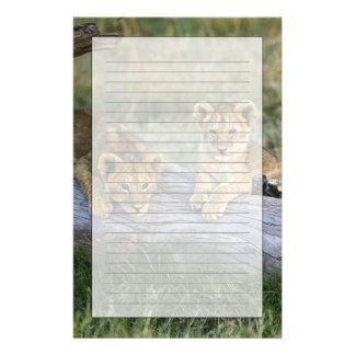 Lion cubs on log, Panthera leo, Masai Mara, 2 Stationery