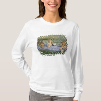 Lion cubs on log, Panthera leo, Masai Mara, 2 T-Shirt