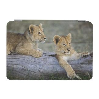 Lion cubs on log, Panthera leo, Masai Mara, iPad Mini Cover