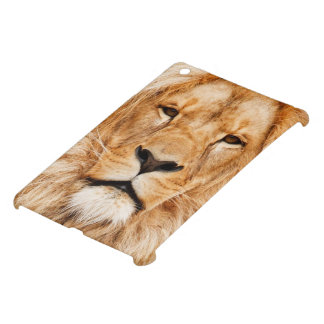 Lion Face Photograph iPad Mini Case