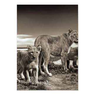 Lion Family 13 Cm X 18 Cm Invitation Card