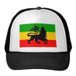 Lion Flag Mesh Hat