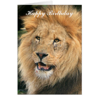 Lion head male beautiful photo happy birthday card