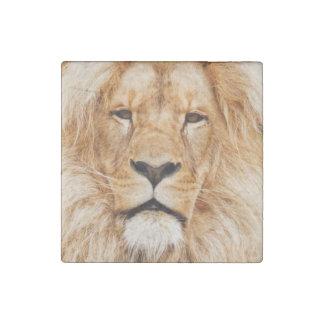 Lion heart stone magnet
