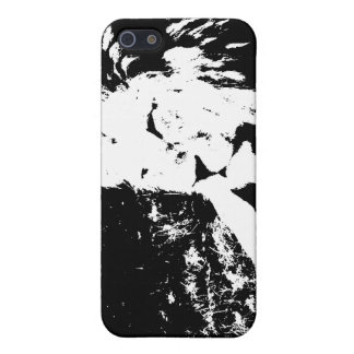 Lion in Black and White iPhone 5 Case
