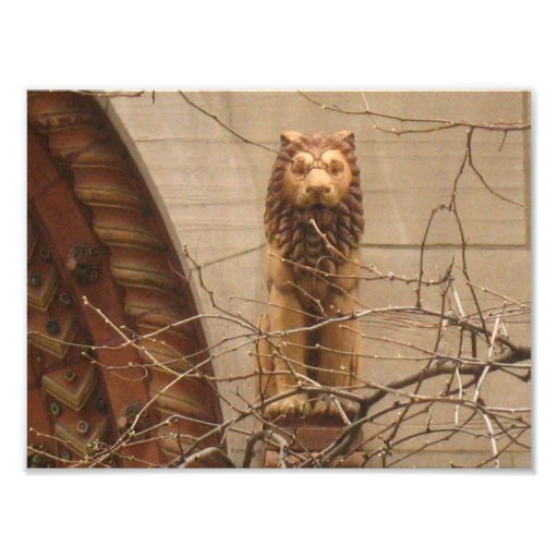 Lion in the city photographic print