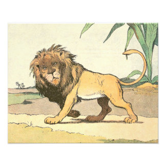 Lion in the Jungle Horizontal Photo Print