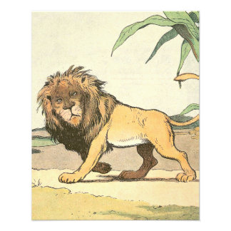 Lion in the Jungle Story Book Photo