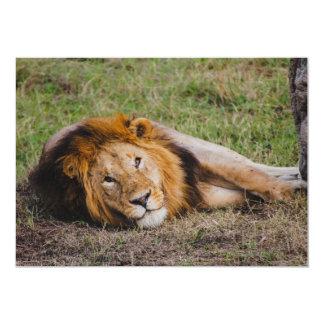Lion Invite