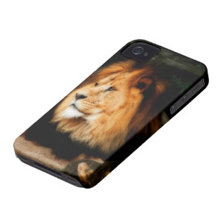 Lion iPhone 4 cover (HD)