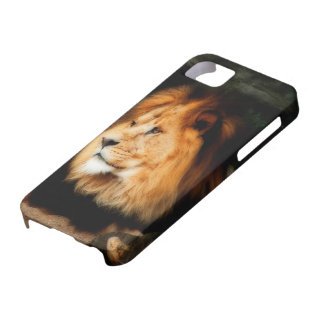 Lion iPhone 5 cover (HD)