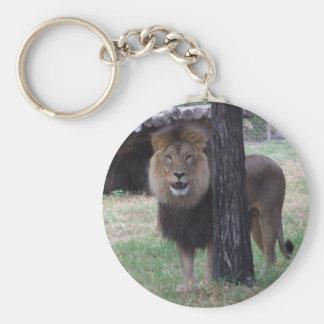 Lion Keyring Basic Round Button Key Ring
