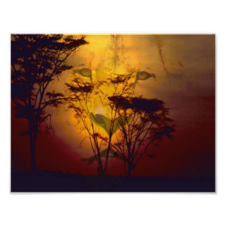 Lion Looking Over African Sunset Photographic Print
