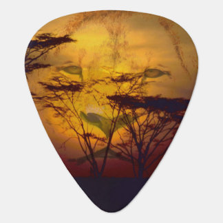Lion Looking Over African Sunset Plectrum