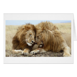 Lion Love Card