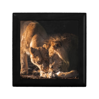 lion love gift box