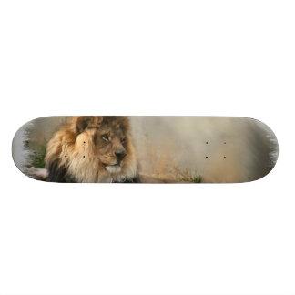 Lion Lovers Art Gifts 20.6 Cm Skateboard Deck