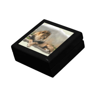 Lion Lovers King of the Jungle Small Square Gift Box