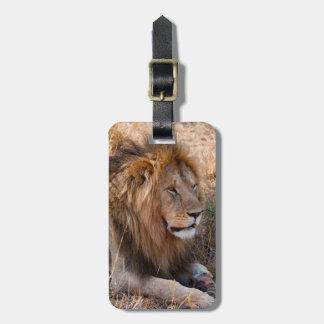 Lion Maasai Mara National Reserve, Kenya Bag Tag