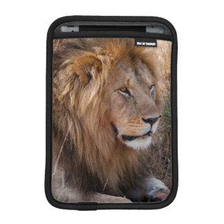 Lion Maasai Mara National Reserve, Kenya iPad Mini Sleeve