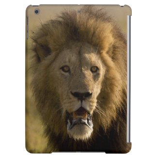 Lion male hunting iPad air case