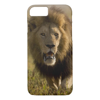 Lion male hunting iPhone 8/7 case